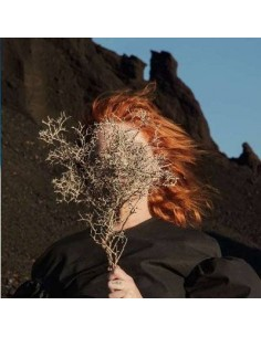 Goldfrapp : Silver Eye (LP)