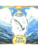 Hillage, Steve : Fish Rising (LP)