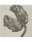 Pet Shop Boys : Release (LP) 2017 mix