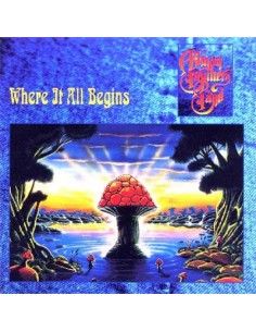 Allman Brothers Band : Where It All Begins (CD)
