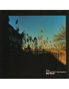 Cinematic Orchestra : Ma Fleur (Deluxe 2-LP-Box)