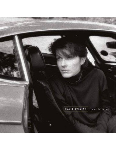 Sylvian, David : Gone To Earth (2-LP)